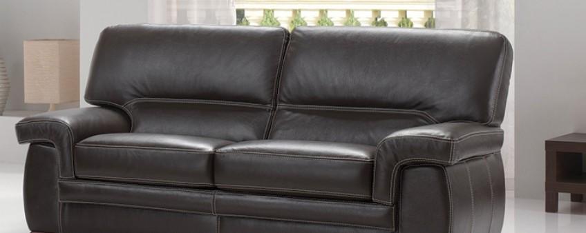 tout savoir sur le cuir : canapé et livre en cuir